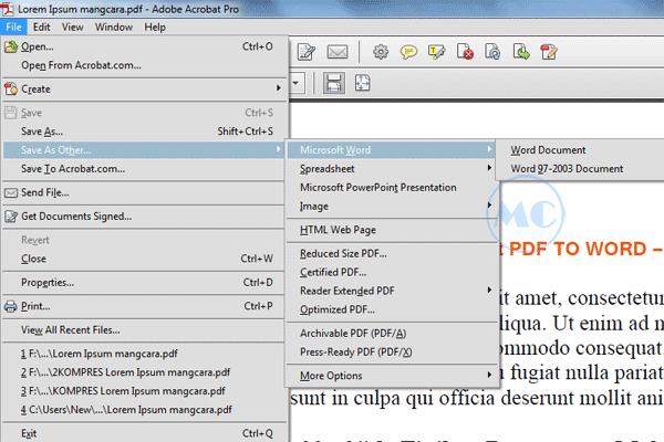 Beginilah Cara Convert PDF Ke Microsoft Word Dengan Adobe Acrobat PRO