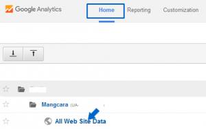 Cara Menghapus Blog Dari Google Analytics